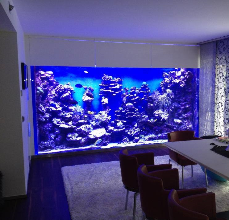 8000 liter aquarium aqua tropica. Black Bedroom Furniture Sets. Home Design Ideas