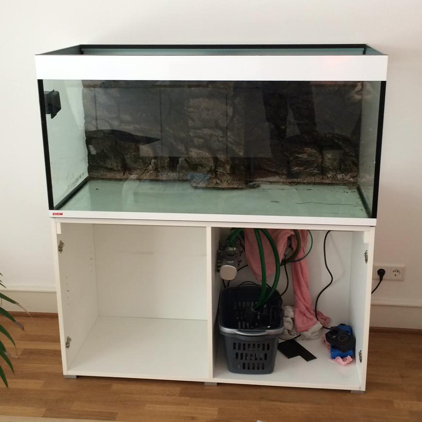 Meine Faszination für Aquascaping - Das leere Aquarium