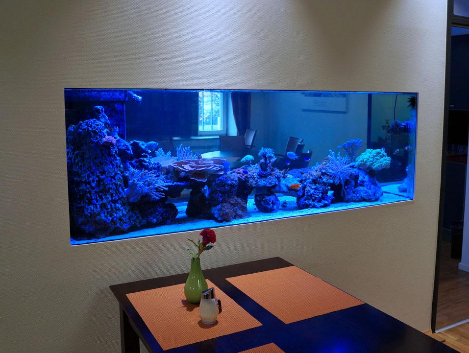 panorama raumteiler aqua tropica. Black Bedroom Furniture Sets. Home Design Ideas