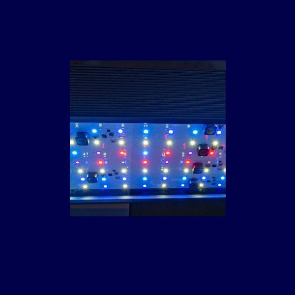 aqua medic aquarius led aqua tropica beleuchtung. Black Bedroom Furniture Sets. Home Design Ideas