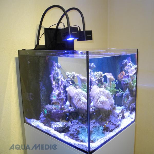 aqua medic cubicus cf qube komplett aqua tropica. Black Bedroom Furniture Sets. Home Design Ideas